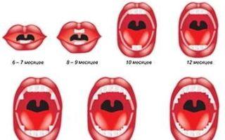 Закономерности прорезывания зубов у детей