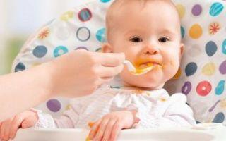Меню ребенка в 6 месяцев — чем должен питаться малыш