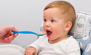 Меню для ребенка в 11 месяцев