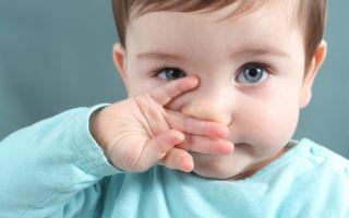 Ребенок хрюкает носиком с соплями или без — в чем причина?