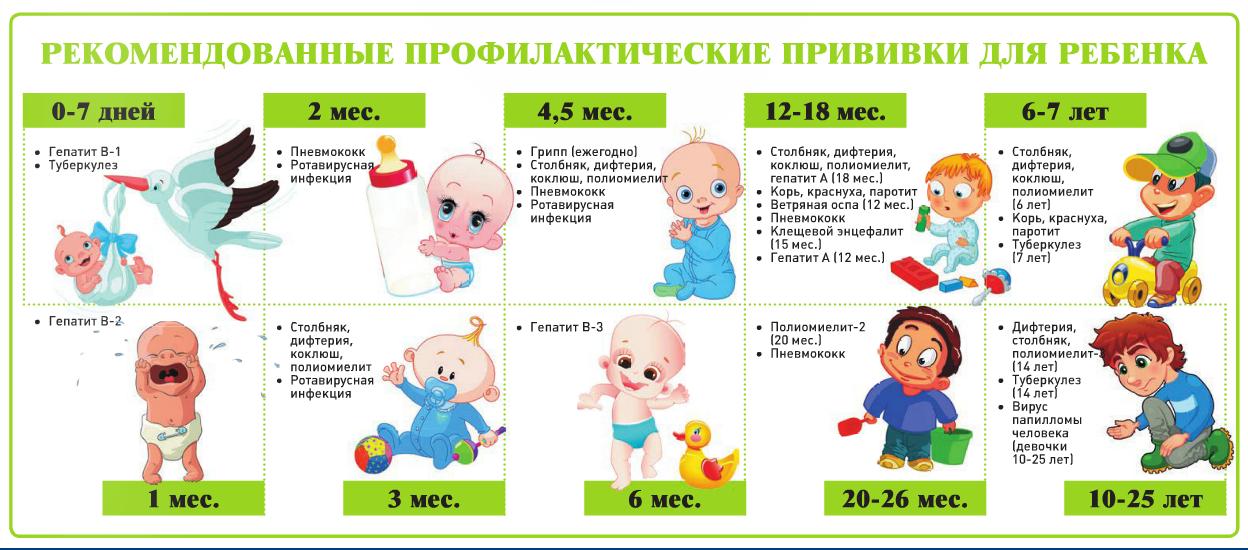 Рекомендованные прививки