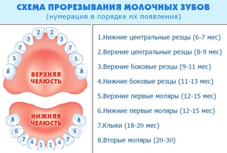 Болевом синдроме при прорезывании зубов